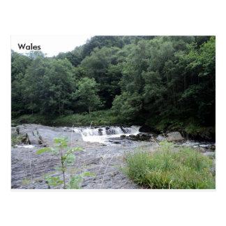 The River Rheidol, Ceredigion, Wales Postcard