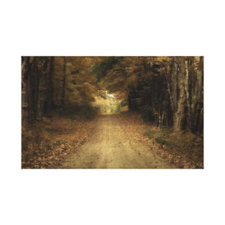 The Road Gallery Wrapped Canvas