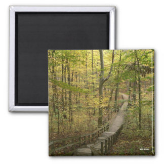 The Road Less Traveled Magnet