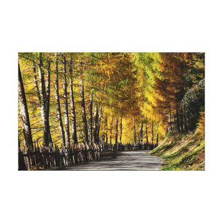 The road to autumn stretched canvas prints