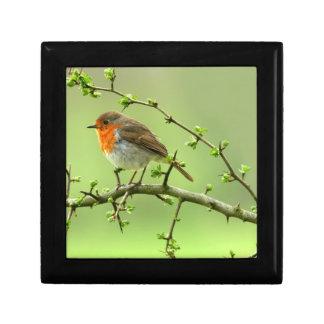 The Robin Gift Box