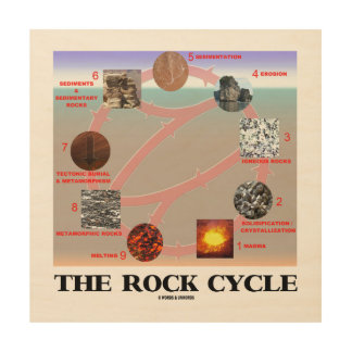 The Rock Cycle Geology Earth Science Wood Print