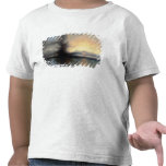 The Rock of Salvation, 1837 (oil on canvas) Tee Shirts