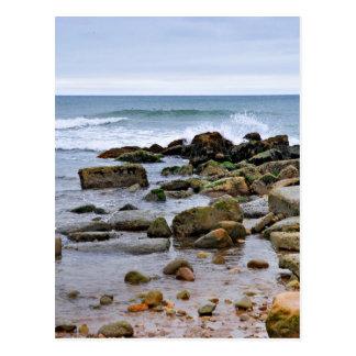 The Rocky Beaches of Montauk, Long Island, NY Postcard