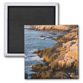 The rocky coast of Isle au Haut in Maine's Magnets