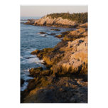 The rocky coast of Isle au Haut in Maine's Poster