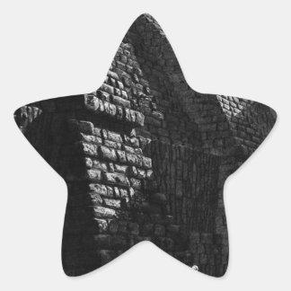 The Roman antiquities, t. 4, Plate X Star Sticker