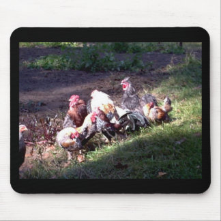 The Rooster Gang Mouse Pad
