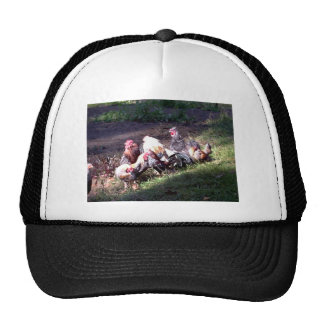 The Rooster Gang Trucker Hat