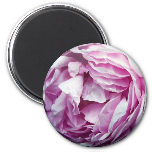 The Rose 2 Inch Round Magnet