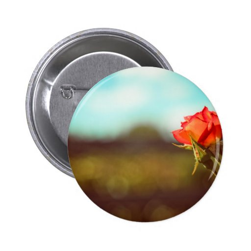 The Rose Button