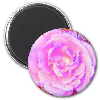 the-rose fridge magnet