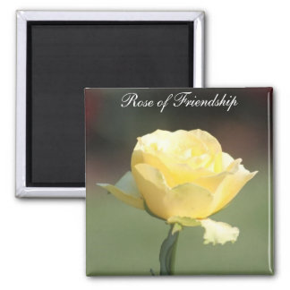 The Rose of Friendship 2 Inch Square Magnet