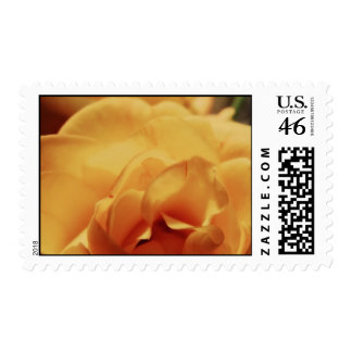 The Rose Postage Stamps