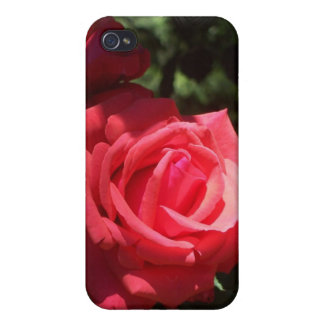 The Rose Speck case Case For iPhone 4