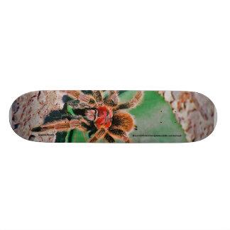 The Rosehair Tarantula Skateboard