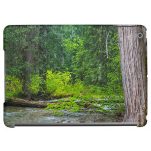 The Ross Creek Cedars Scenic Area Case For iPad Air
