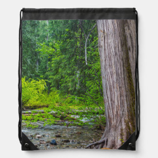 The Ross Creek Cedars Scenic Area Drawstring Backpack
