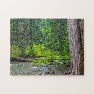 The Ross Creek Cedars Scenic Area Puzzles