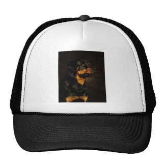 The Rotty Mesh Hats