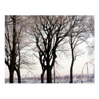 The Round Postcard