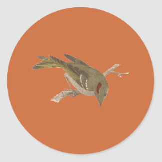 The Ruby-crowned Kinglet(Regulus calendula) Classic Round Sticker