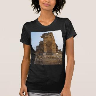 The ruins of Hierapolis Shirts
