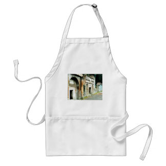 The Ruins of Pompeii - marketplace with temples Adult Apron