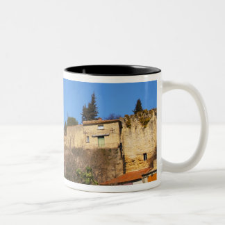 The ruins of the Pope's summer castle in Two-Tone Coffee Mug