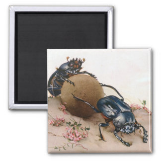THE SACRED BEETLE 2 MAGNET