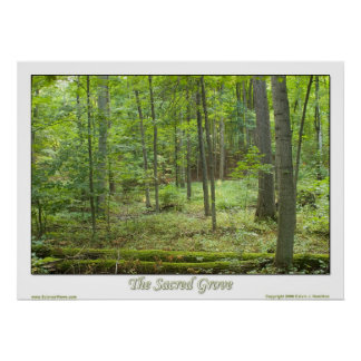The Sacred Grove Poster
