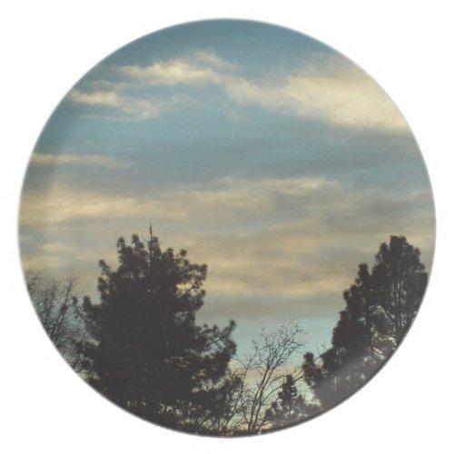 The San Bernardino Mountains Tree Plate fuji_plate