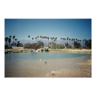 The Santa Barbara coast Print