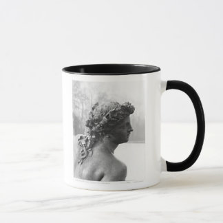 The Saone River from the Parterre Mug