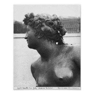 The Saone River ,from the Parterre Poster