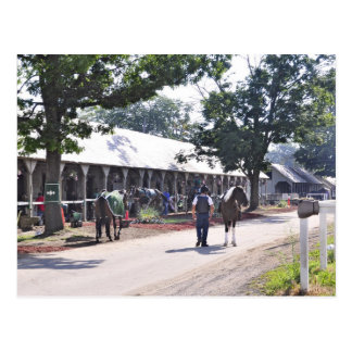 The Saratoga backstretch on opening day Postcard
