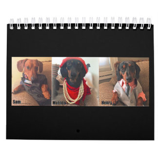 The Savvy Dachshunds 2017 Calendar