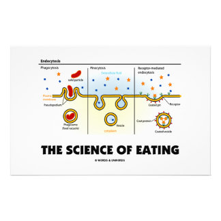 The Science Of Eating (Endocytosis Biology Humor) Stationery