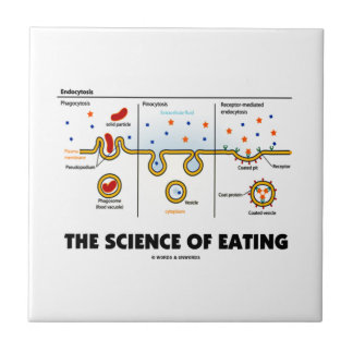 The Science Of Eating (Endocytosis Biology Humor) Small Square Tile