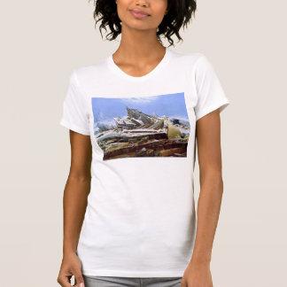 The Sea of Ice, Caspar David Friedrich T Shirt