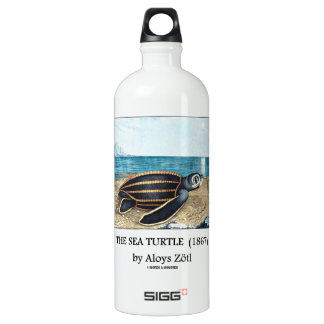 The Sea Turtle (1867) by Aloys Zötl Aluminum Water Bottle