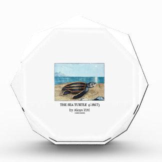 The Sea Turtle (1867) by Aloys Zötl Award