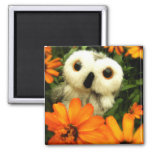 The Search For Fairies Continues... 2 Inch Square Magnet