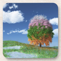 The Season Tree Cork Coasters