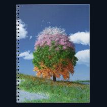The Season Tree Notebook
