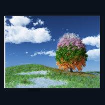 The Season Tree Postcard