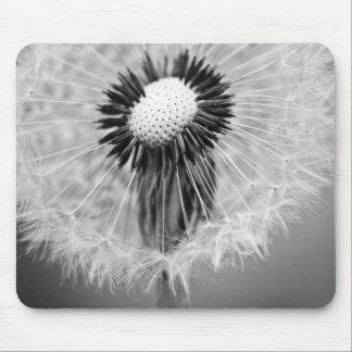 The Seeds of Tomorrow Mouse Pad
