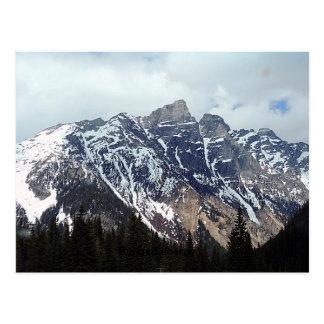 The Selkirk Mountain range of B.C. Postcard