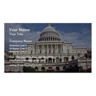 The Senate, Washington, D.C.  flowers Double-Sided Standard Business Cards (Pack Of 100)