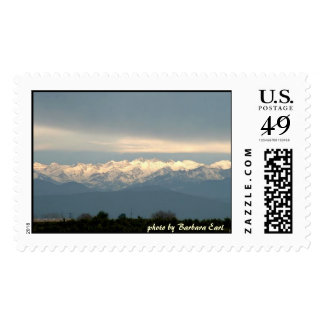 The Sequoia's Stamp